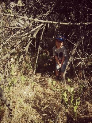 Tony disfrutando del verano en el bosque.