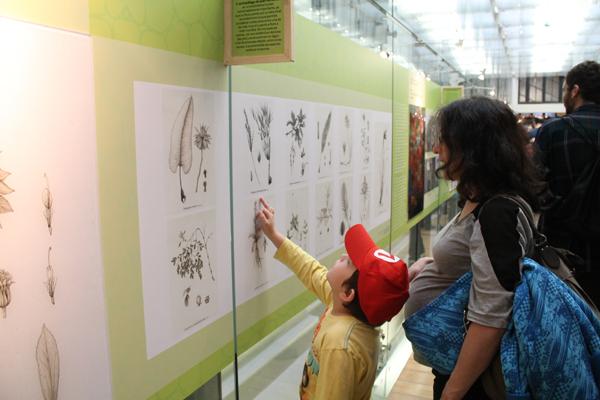 Tony y yo en la exposición de ilustración botánica